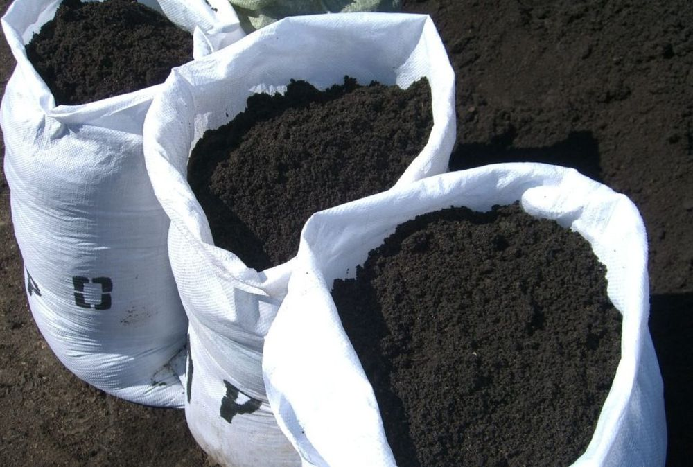 Чернозем или лучшая земля для растений